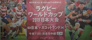 10 13 w 日本 vs. スコットランド ラグビーワールドカップ 2019 日本大会 800.jpg