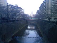 石神井川 02142010.JPG
